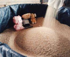 籾摺り終了後の米