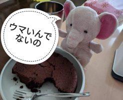 ガトーショコラ試食