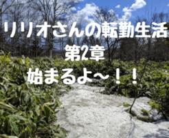 リリオさんの転勤生活第2章始まるよ~!!
